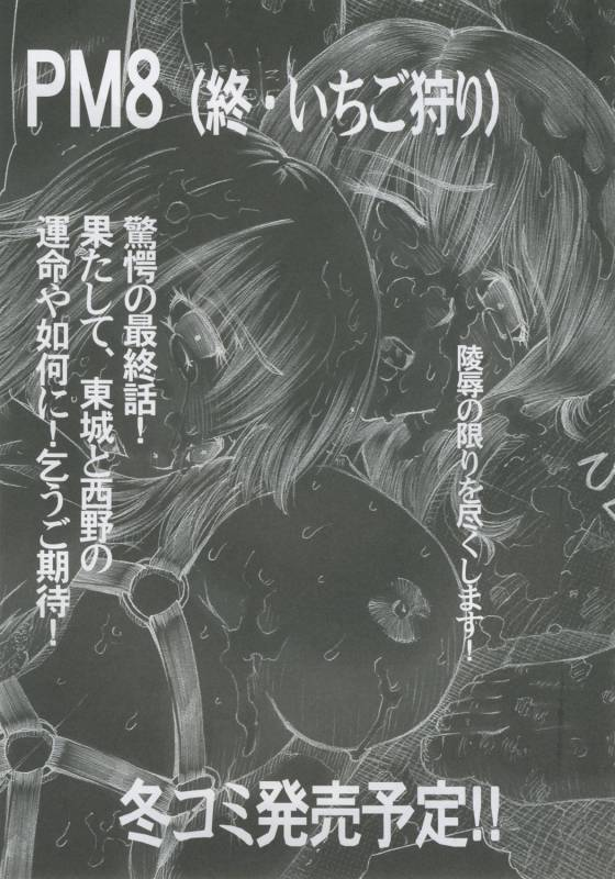 (Comic Characters! 01) [Studio★ParM (Kotobuki Utage)] PM07 Zoku Ichigo Gari (Ichigo 100%)_29